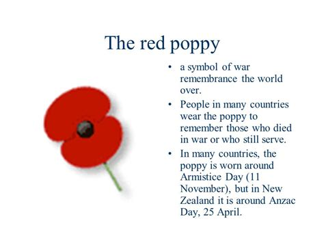 why is the poppy a symbol of remembrance day 28 images