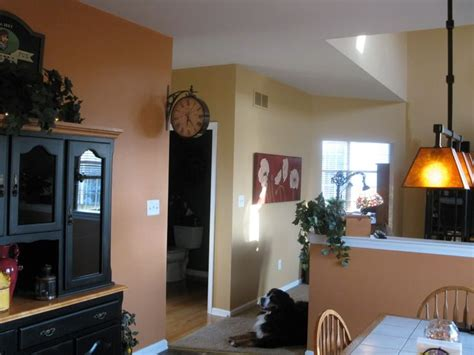 kitchen kitchen wall colors ideas eddie bauer paint orange quot grounded quot by behr supposed to be a match for