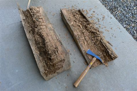 termite custom woodworks carbon fiber repair options for historic buildings