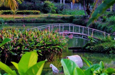 Bibit Buah Di Mekarsari 27 tempat wisata di bogor paling favorit tahun ini hits