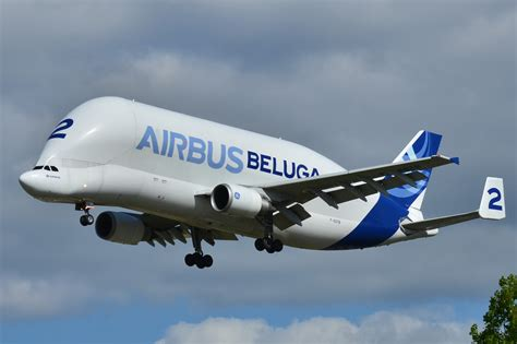 Airbus A880 Interior by File Airbus A300 600st Airbus Industries Aib Beluga 2 F
