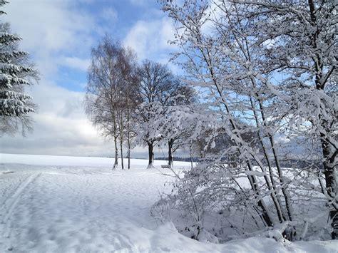 Gartendeko Im Winter by Gartendeko Januar 2016