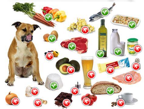 alimenti da evitare per non ingrassare cibi che fanno al