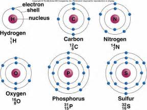 Protons Neutrons And Electrons In Sulfur 4 Gb1 Learnres Web Ch02