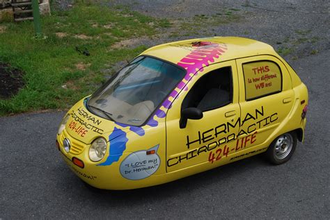 Animal Wall Murals herman chiropractic vehicle car wrap zap electric