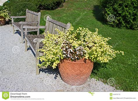 flower pot bench plans flower pot and benches stock photo image 44470173