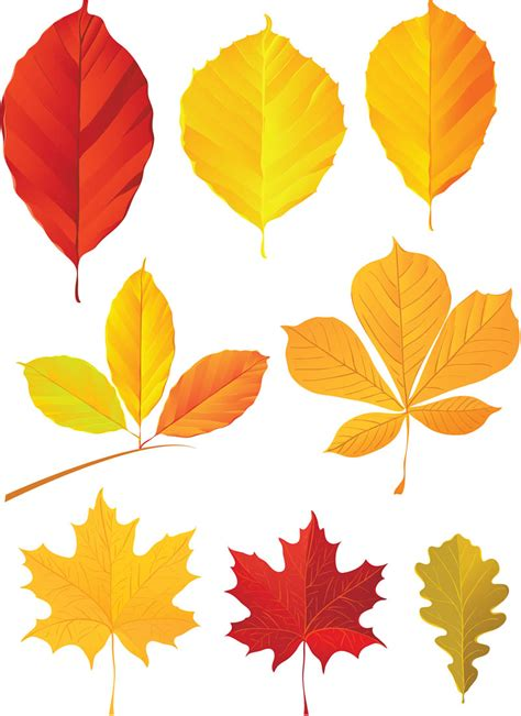clipart autumn leaves trees vector graphics page 3