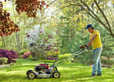 the dull blades mowing the lawn with dull blades turf care 11 ways you
