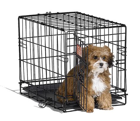 crate for puppies small crate pet crate