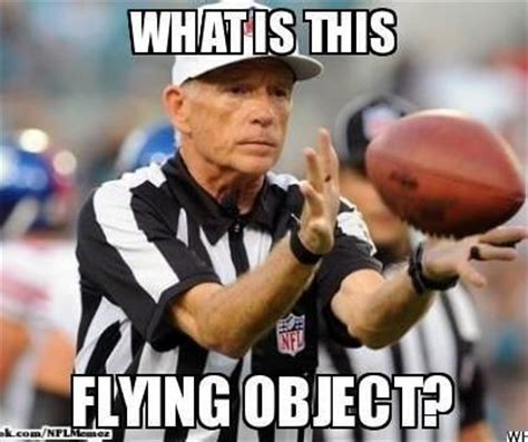 Nfl Ref Meme - 78 best images about funny memes on pinterest despicable