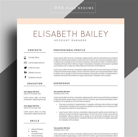 curriculum vitae professional design resume template cv template professional resume template