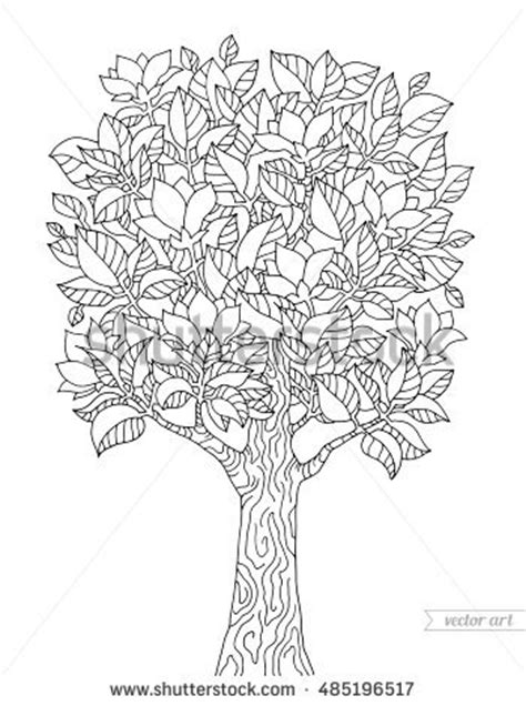 magnolia tree coloring pages magnolia tree coloring pages