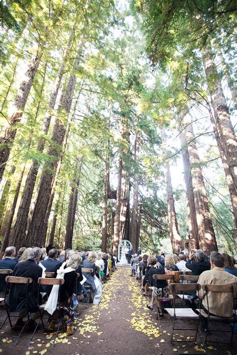 wedding california a barn wedding amongst the towering california redwoods