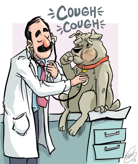 puppy coughing kennel cough town and country animal hospital town and country animal hospital