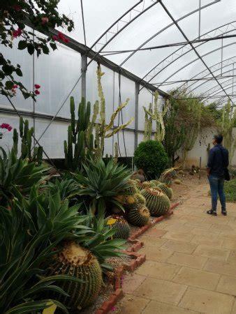giardino botanico bari ristorante il giardino dei tempi orto botanico in bari