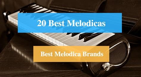 best melodica 20 best melodica reviews 2018 best melodica brands cmuse