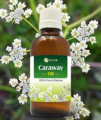Murah Healing Solutions Vanilla Essential 10ml Made In Usa best caraway out of top 12