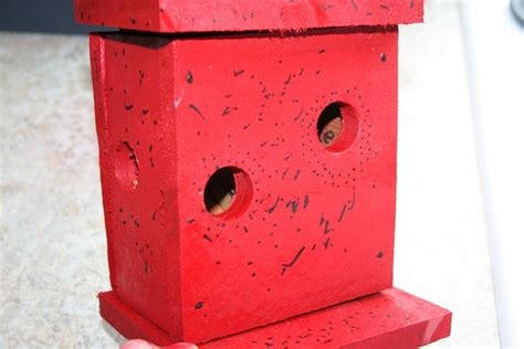ladybug house plans ladybug house plans image search results