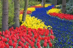 Flowers Of Netherlands - the most beautiful gardens in the world keukenhof garden