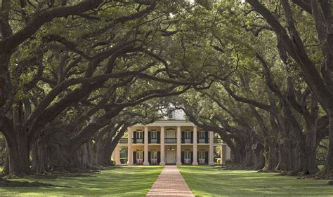 oak alley plantation new orleans plantation country journey to new orleans plantation country happening now