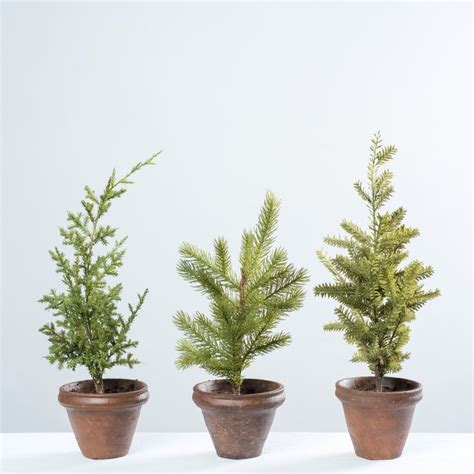 25 unique potted christmas trees ideas on pinterest