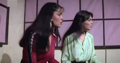 parveen babi and zeenat aman photo unforgettable incomparable immortal ladies and