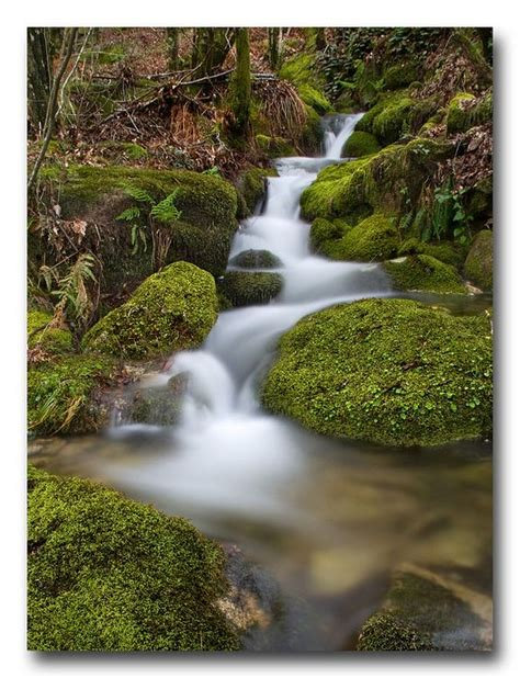 monte aloia nature park location spain nature and parks on pinterest