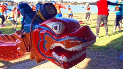 boat covers illawarra illawarra dragon boat club membership numbers fire up