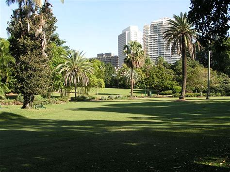 City Botanical Gardens Brisbane City Botanical Gardens Brisbane 10 Interesting Facts About Brisbane City Botanic Gardens 10