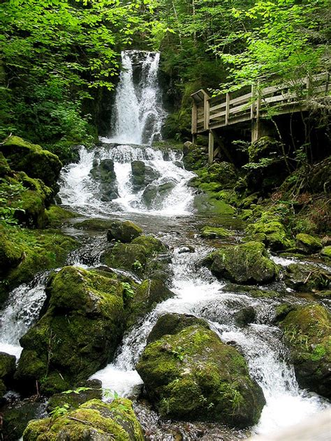 dickson falls in fundy national park new brunswick canada dickson falls fundy national park new brunswick my