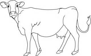 Cow Drawing Outline by Cow Coloring Page Free Clip