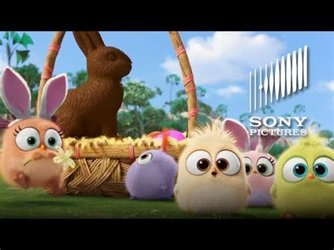 happy easter veckans film 11 best images about hatchlings on pinterest easter