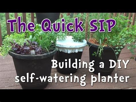 minute diy  watering container garden perfect