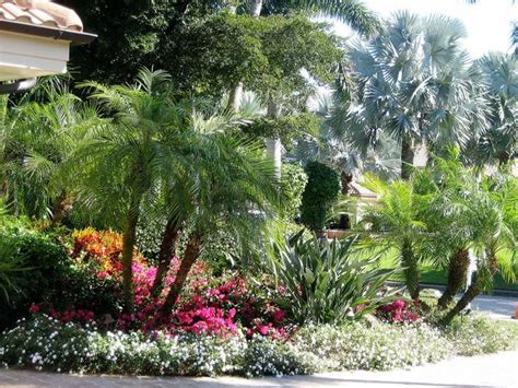 93 Best Ideas About Florida Landscape Plants I Love On Florida Landscape Plants