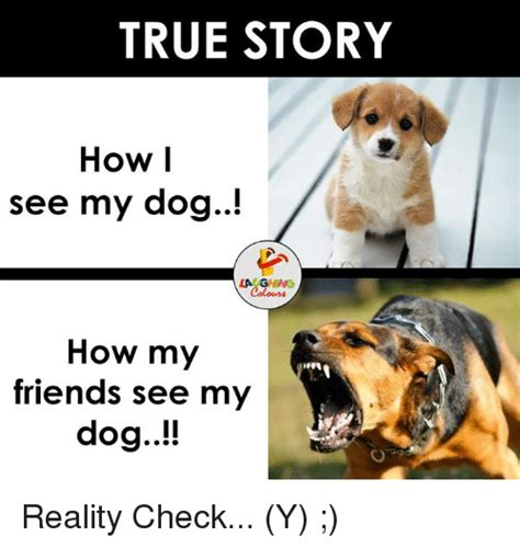 Dog Laughing Meme - 25 best memes about reality reality memes
