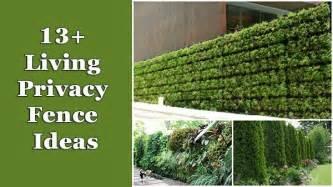 Trellis Screening Ideas 13 Living Privacy Fences Ideas Home And Gardening Ideas