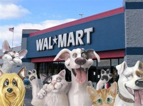 can you bring dogs into walmart bring your pet to walmart day may 9th