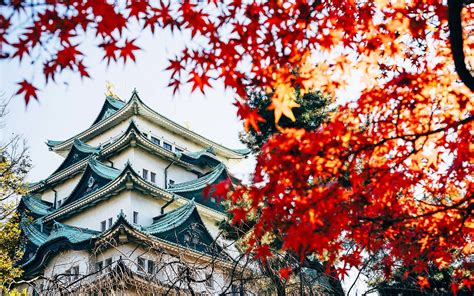 fly  japan     trip travel leisure
