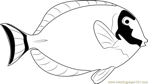 blue fish coloring pages blue tang fish coloring pages coloring pages