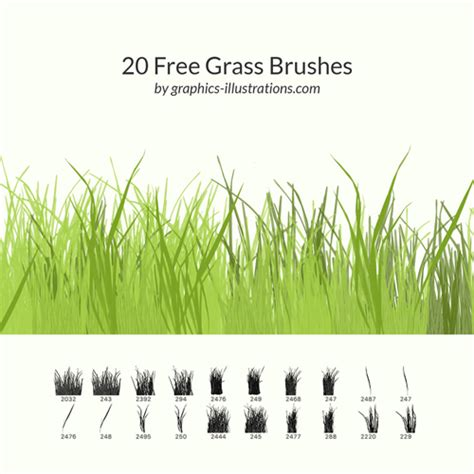 vector grass tutorial free grass brushes set photoshop brushes free download