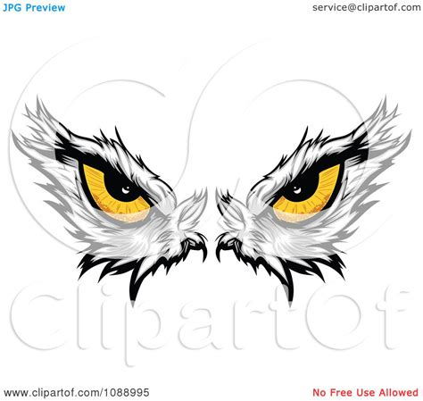 clipart yellow bald eagle eyes royalty free vector