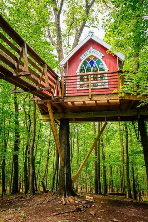 a treehouse at mohican cabins in jefferson township