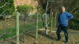 cundall vegetable garden gardening australia fact sheet pete s patch overview