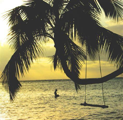 swing man palm tree swing man bossfight