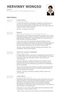 Responsable Des Finances Exemple De Cv Base De Donn 233 Es