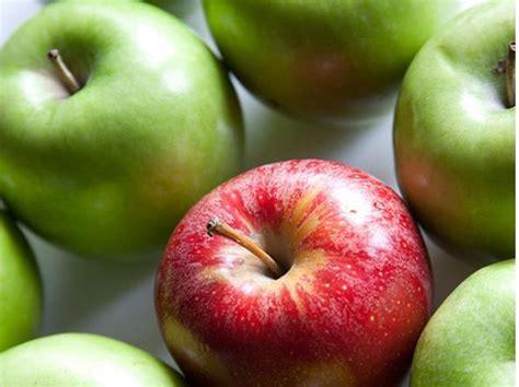 alimento brucia grassi cibi brucia grassi i 10 alimenti che fanno dimagrire