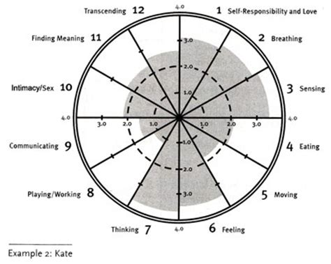 wellness wheel template wellness wheel exle 2 kate