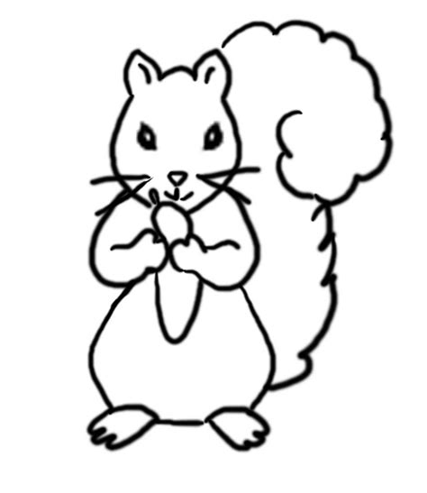 childrens coloring pages of squirrel grey squirrel coloring page grey squirrel coloring