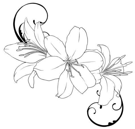 flower outline pictures   clip art