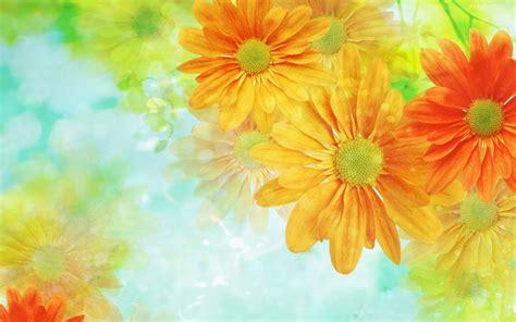 imagenes flores hd 174 gifs y fondos paz enla tormenta 174 fondos de pantalla de
